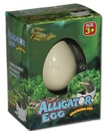 Alligatoregg - klekk din egen alligator