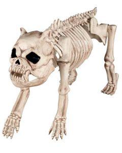 Hundeskjelett - pyntegjenstand 46cm