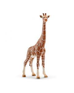 Schleich Giraffe - hunndyr