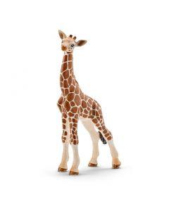 Schleich Giraffe calf - Kalv