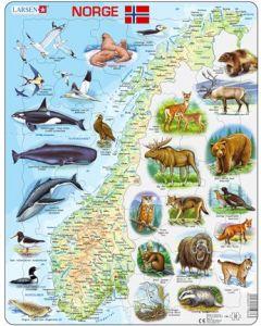 Platepuslespill Norgeskart - dyrearter