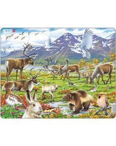 Platepuslespill Maxi Artiske dyr