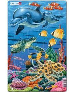 Platepuslespill Midi hav (delfin) - 11 brikker