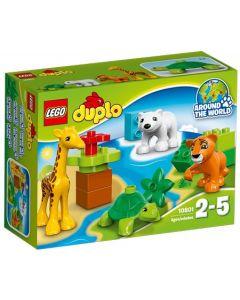 LEGO DUPLO Town 10801 Dyreunger