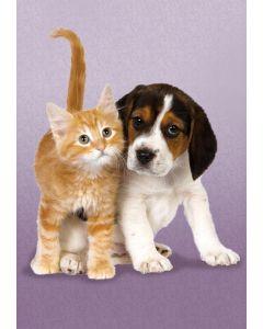 Clementoni mini puslespill katt og hund - 260 brikker
